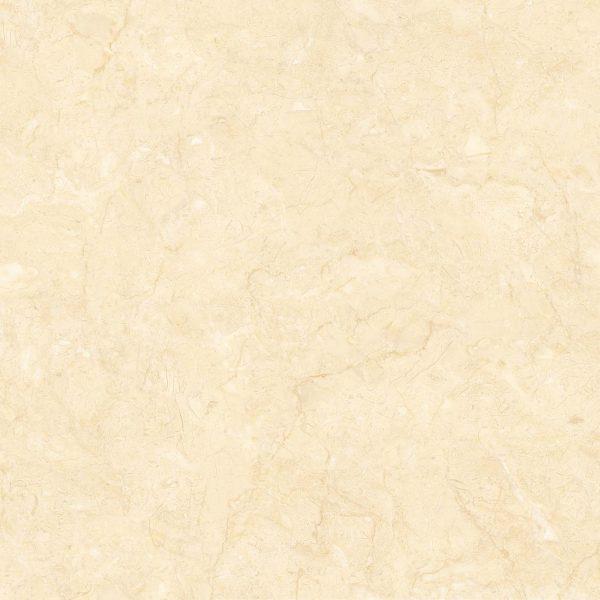 Gạch lát nền 1LTG80026